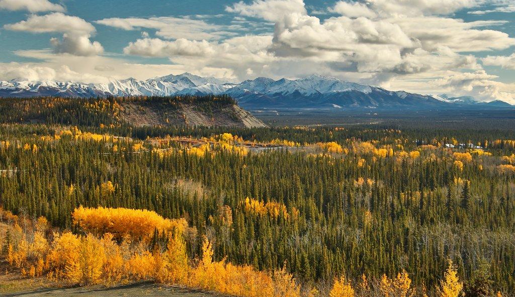 Wrangell - St. Elias Mountains