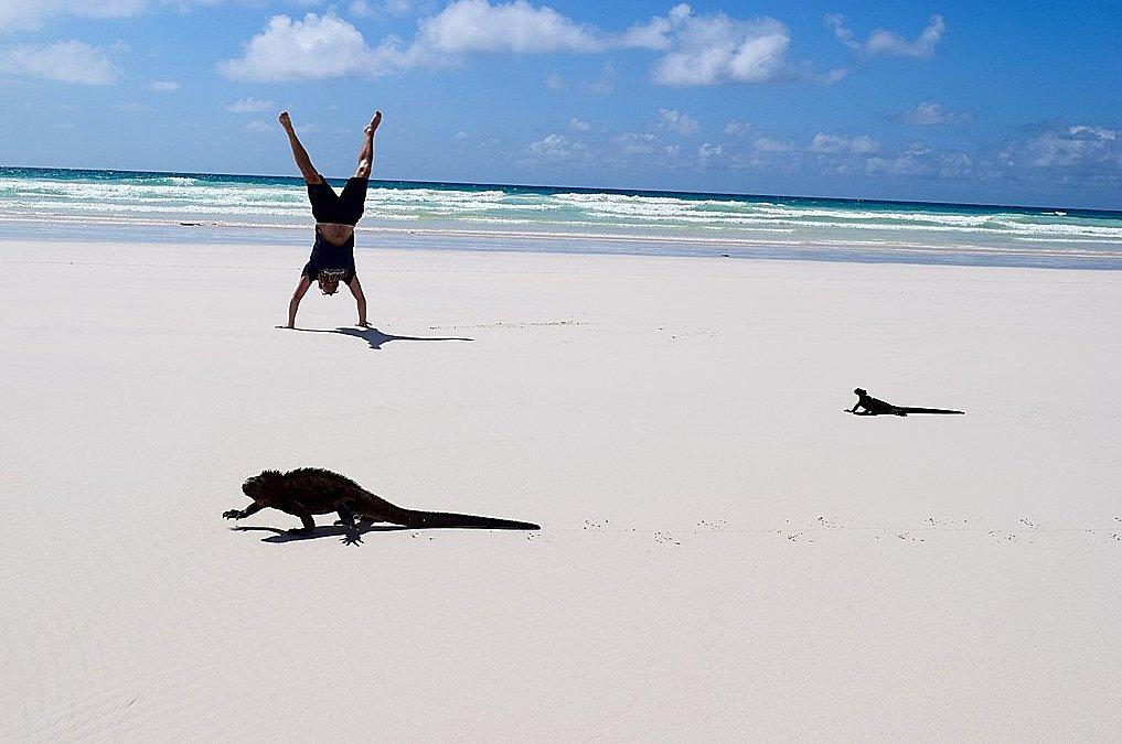 Pristine beach of Tortuga Bay