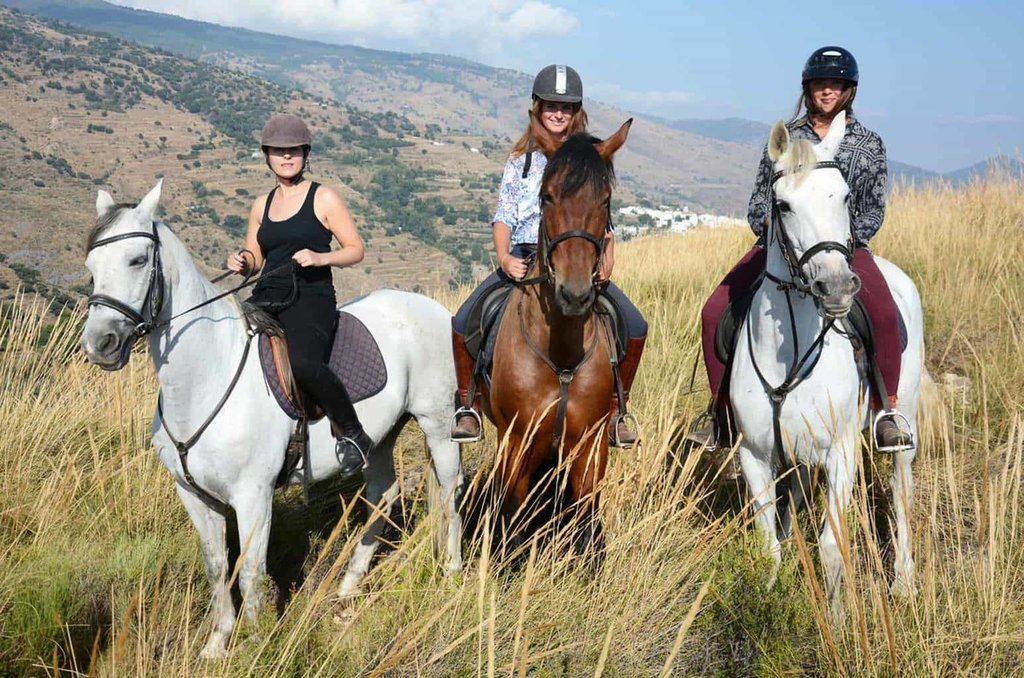 Horse riding in a natural park