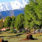 Explore the Orchards of Midelt & Alpine Village of Ifrane