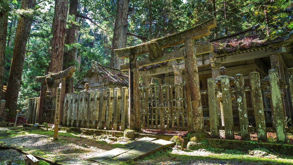 The ancient Okunoin Temple at Koyasan.