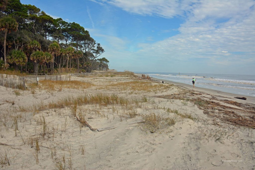 Hunting Island, courtesy of Beaufort-SC