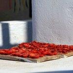 Waterless Farming, An Insider's Food & Wine Tour on Santorini
