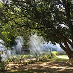 The grounds of Tharu Lodge