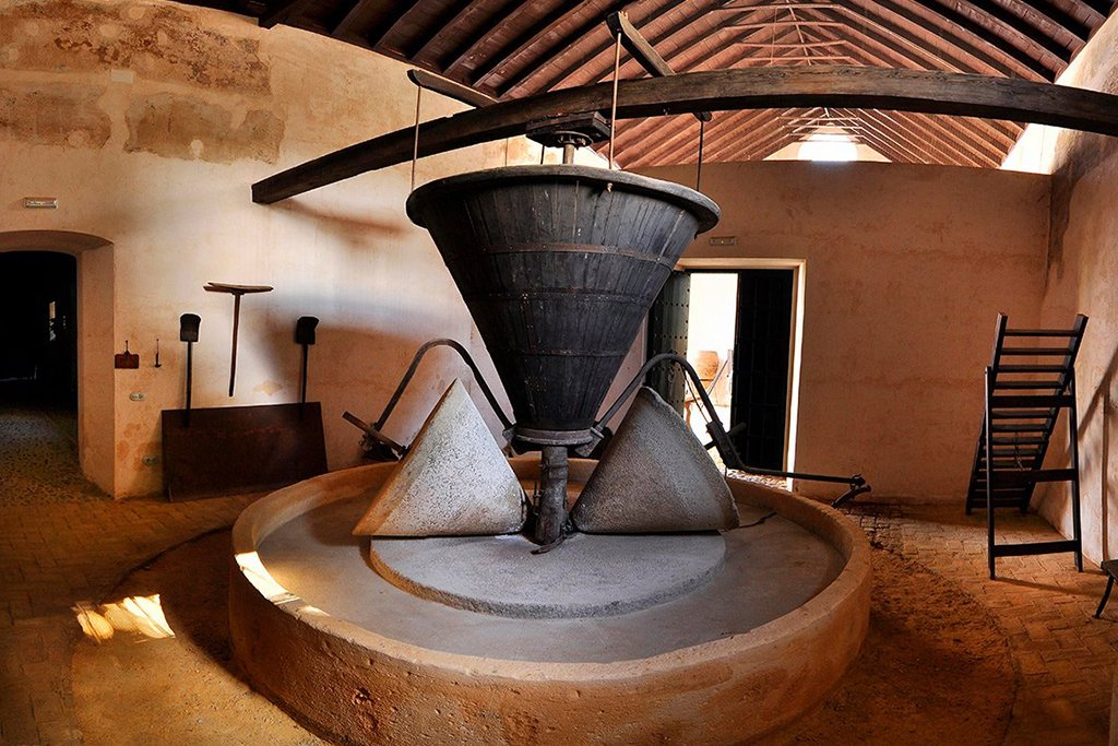 An antique olive oil press