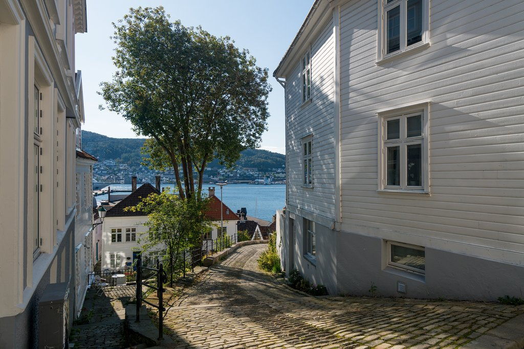 Walk through hidden cobbled streets of Bergen with a local guide