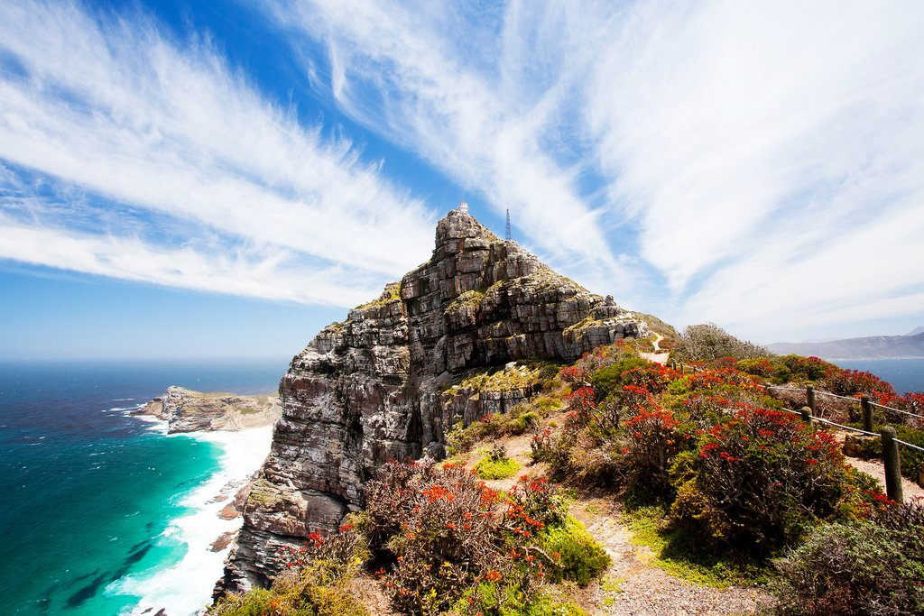 Cape Point from within the park