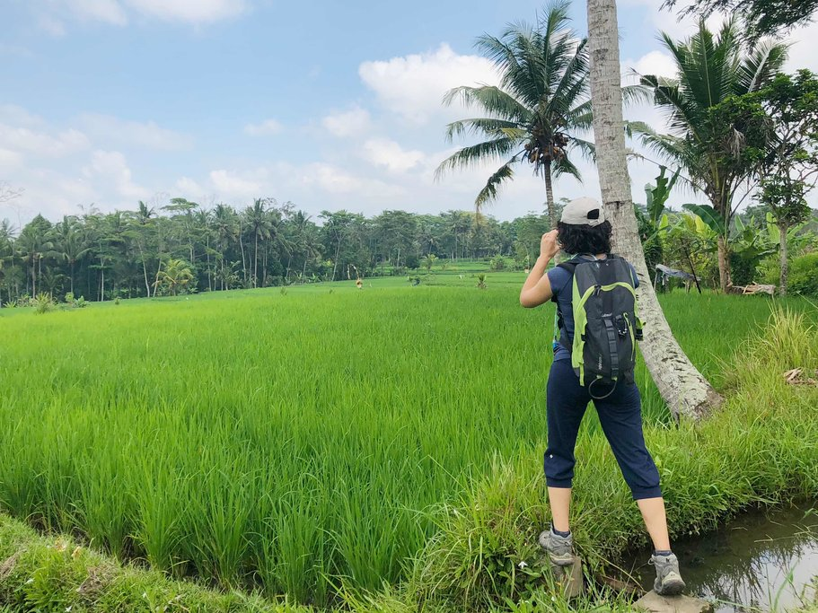 In the rice paddies