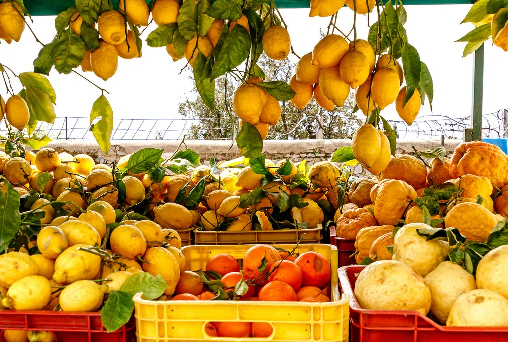 Lemons, a staple of the Amalfi Coast