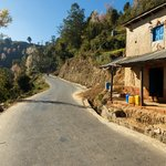 The road to the Namo Buddha Monastery