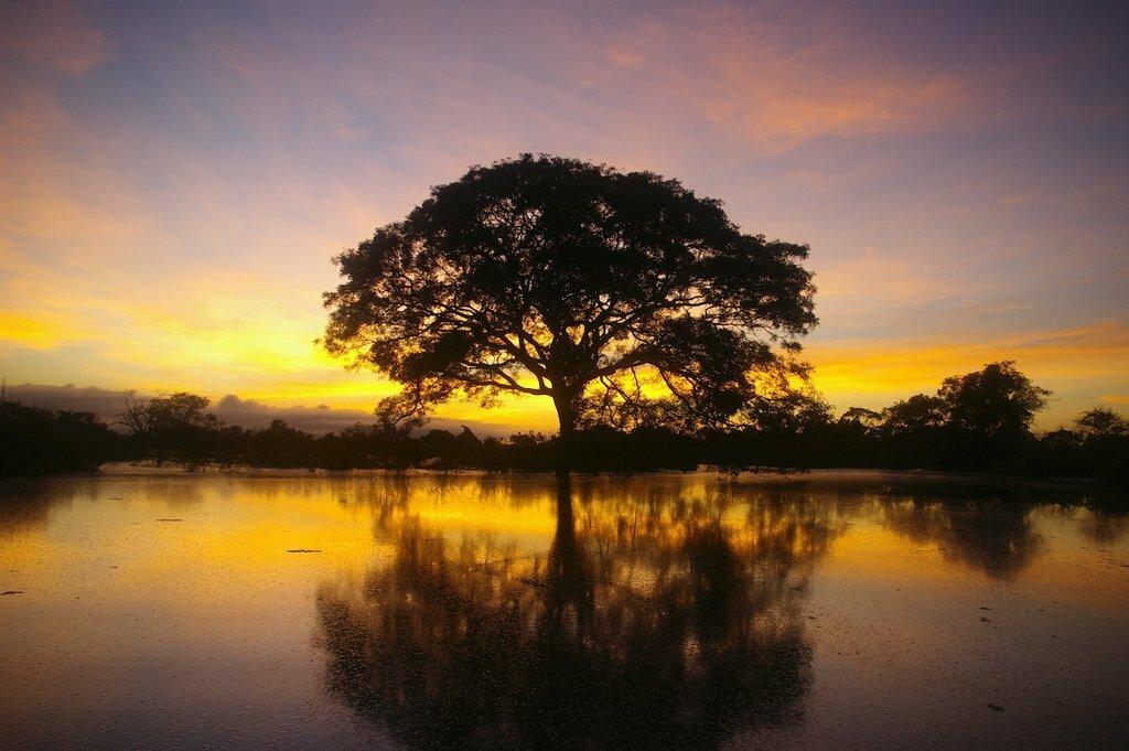 Sunrise over the Yacuma River