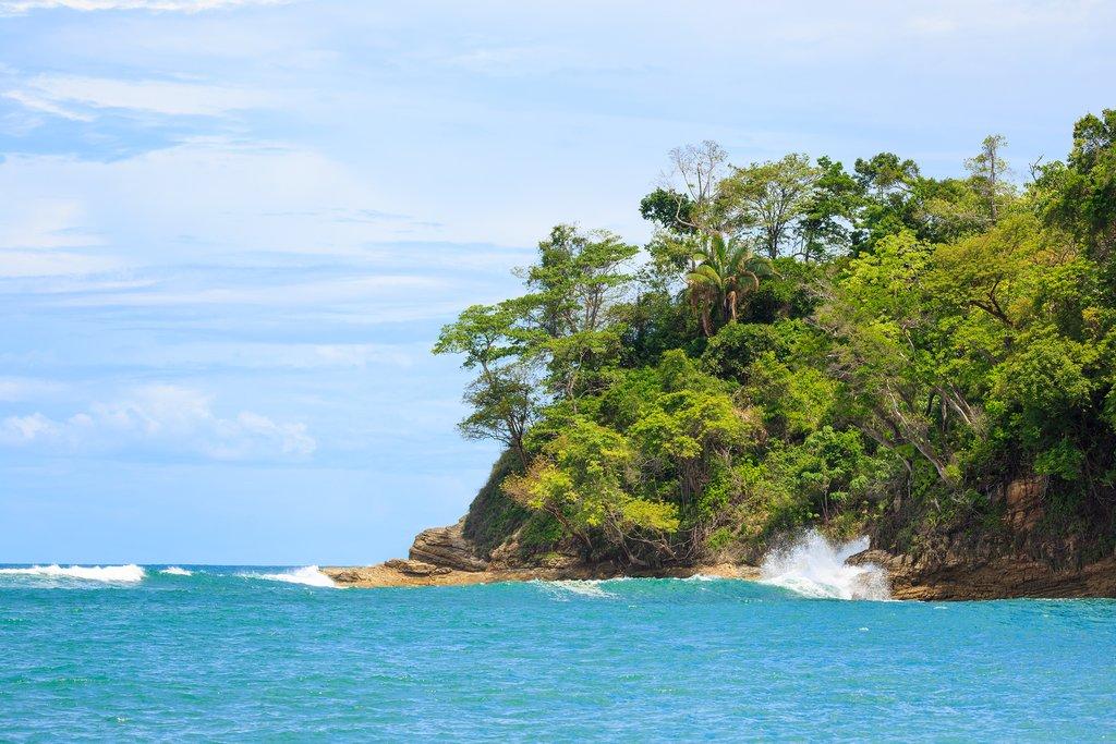 Central Pacific Coastline