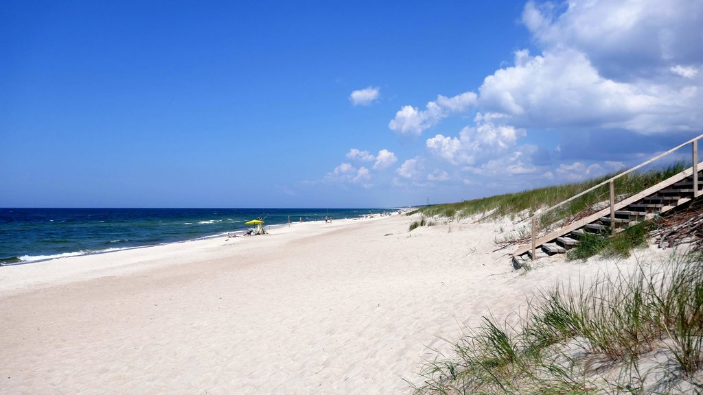 White sand beach on the Curonian Spit