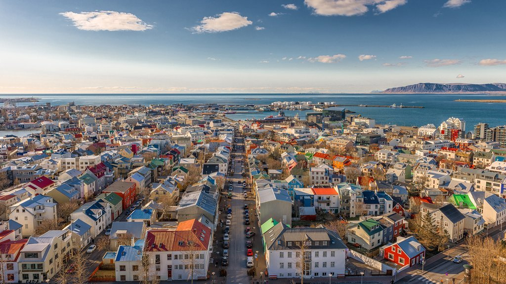 A view of Reykjavik from the church tower