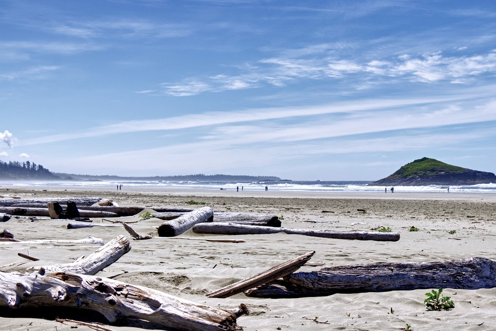 Driftwood on Chesterman Beach south of Tofino