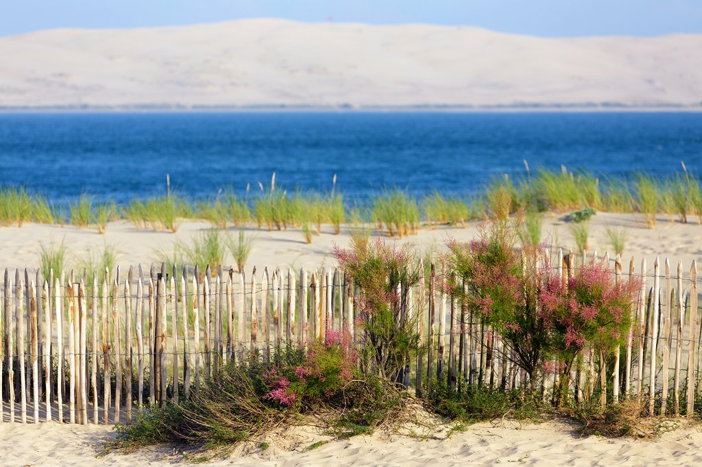 Spend some time at the beach in the Bay of Arcachon