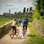 bardolino lake garda bike tour