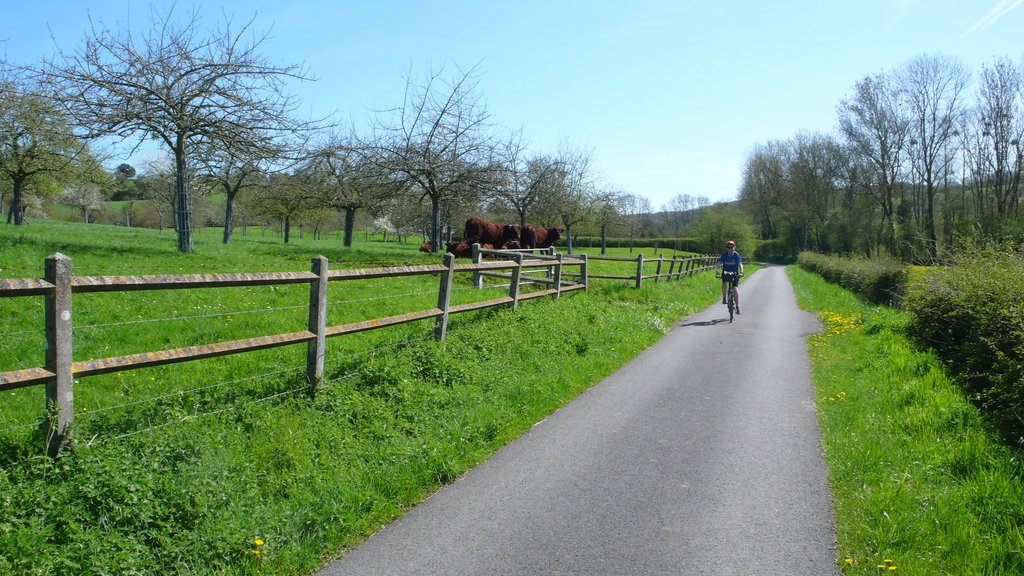Ride on quiet paths in Normany