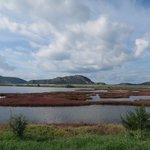 Eco Biking Tour in the Gialova Lagoon