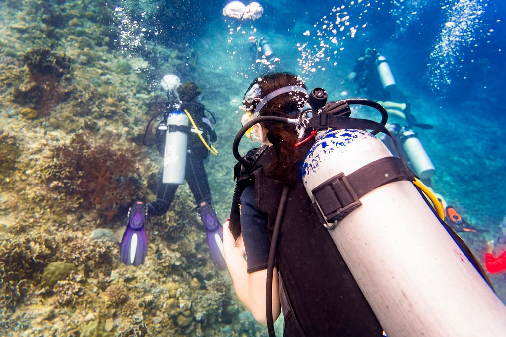 Head out on a scuba diving trip around the islands