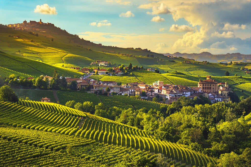 View across vineyards to the town of Barolo.