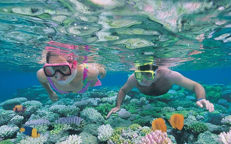 Go snorkeling on the southern Gili islands off Lombok