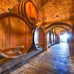 Barrels of wine aging in a Barolo vineyard