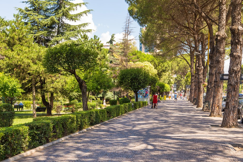 Shaded avenue in downtown Tirana