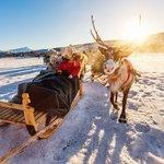 Go reindeer sledding in Norway