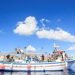 Santorini Fishing Excursion & Seafood Meal