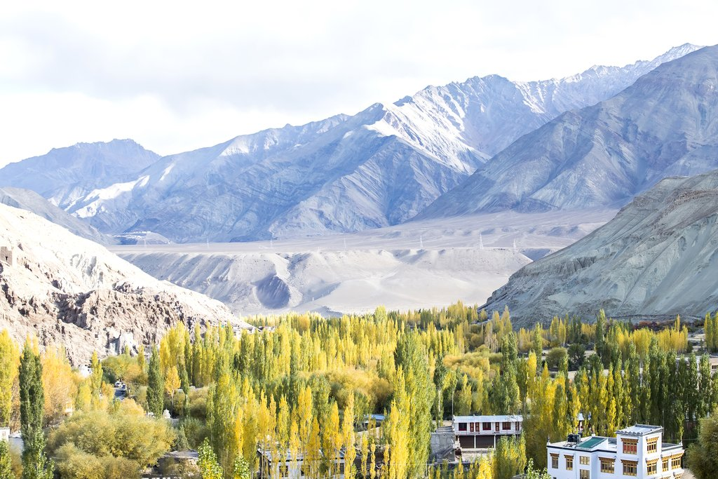 Scenery in the Himalayas near Leh