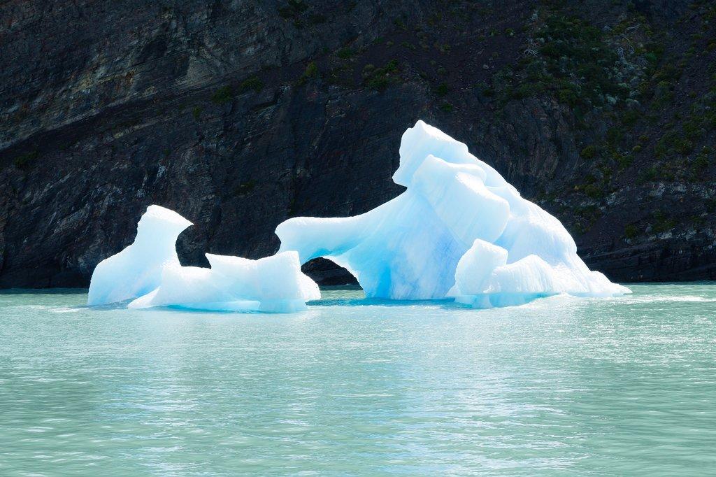Icebergs floating on Argentino Lake
