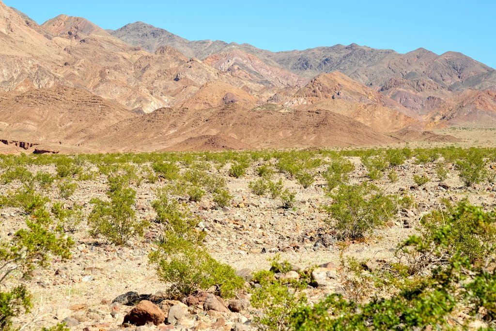 View of Yaqui Pass in Anza-Borrego State Park
