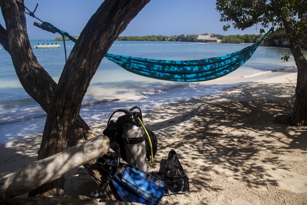 Go diving and then relax in a hammock