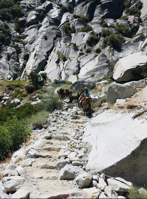Horse Riding in Kings Canyon (Photo courtesy of Cedar Grove Pack Station)