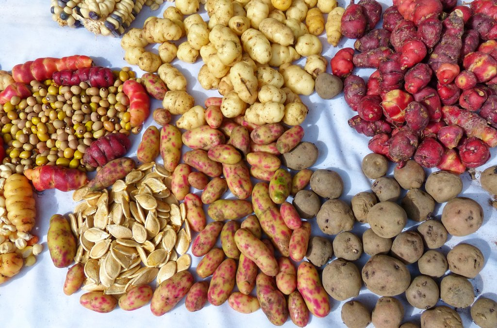 Traditional Peruvian tubers are a market staple.