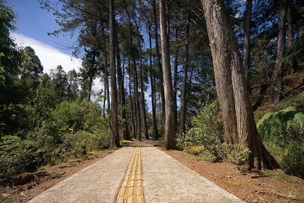 Arvi Park