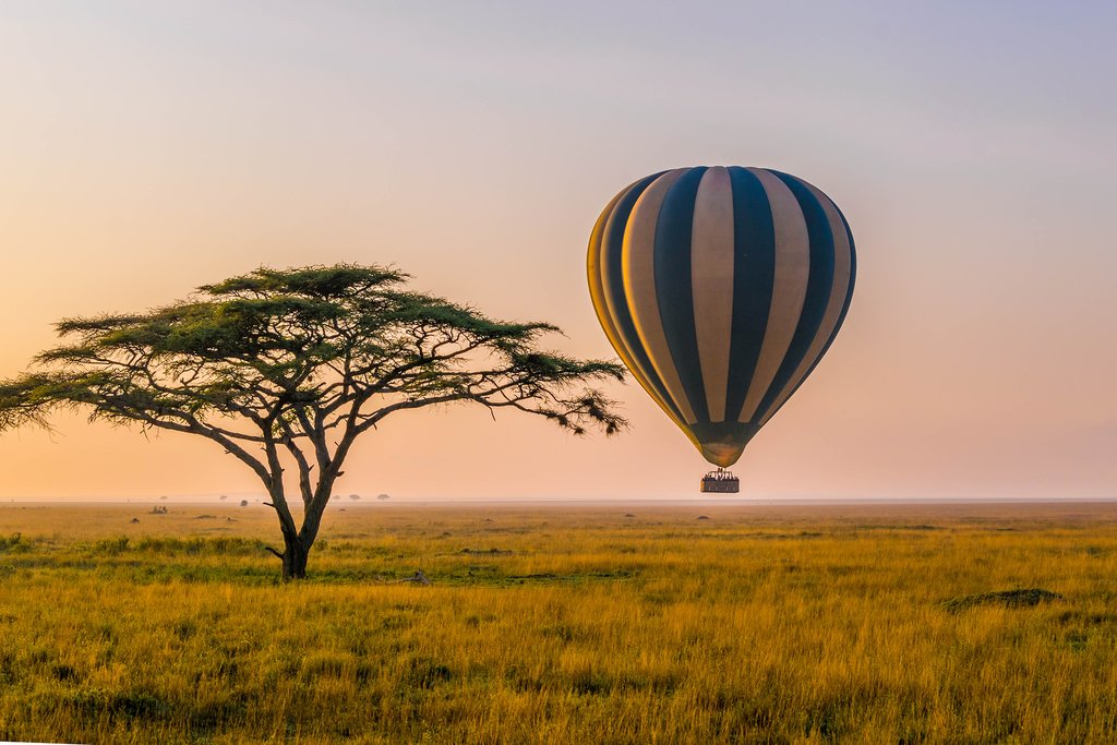 Hot air balloon taking off in the Serengeti