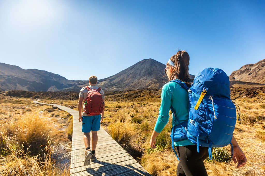 How to Get to Tongariro National Park