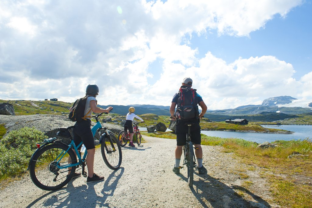 Rent a bike and cycle around Finse when you arrive by train