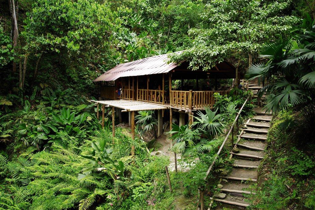 Jungles of Minca