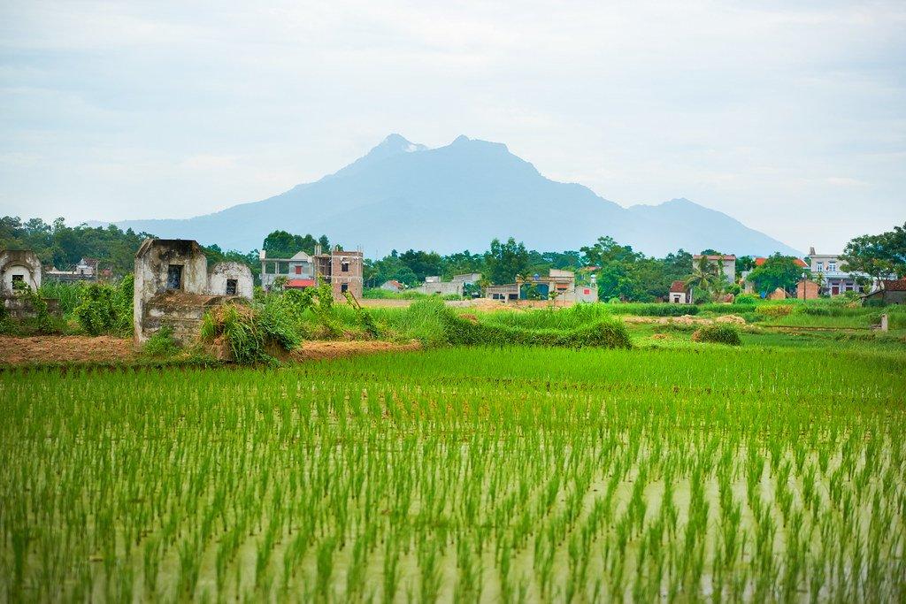 Enjoy the countryside around Hanoi
