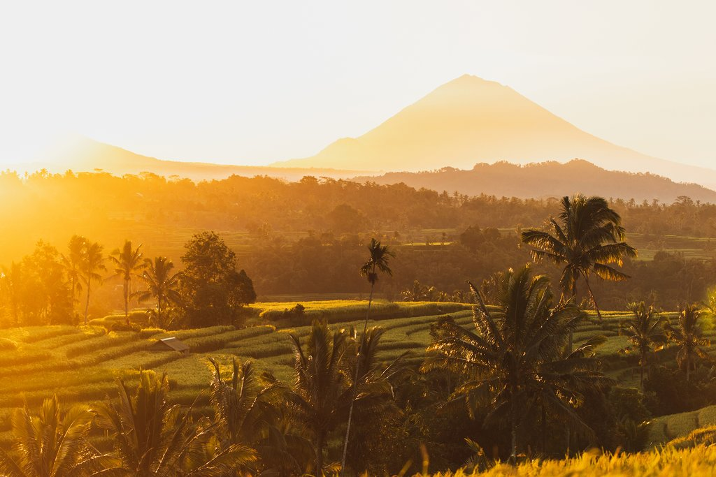 Enjoy views of the volcanoes & rice terraces