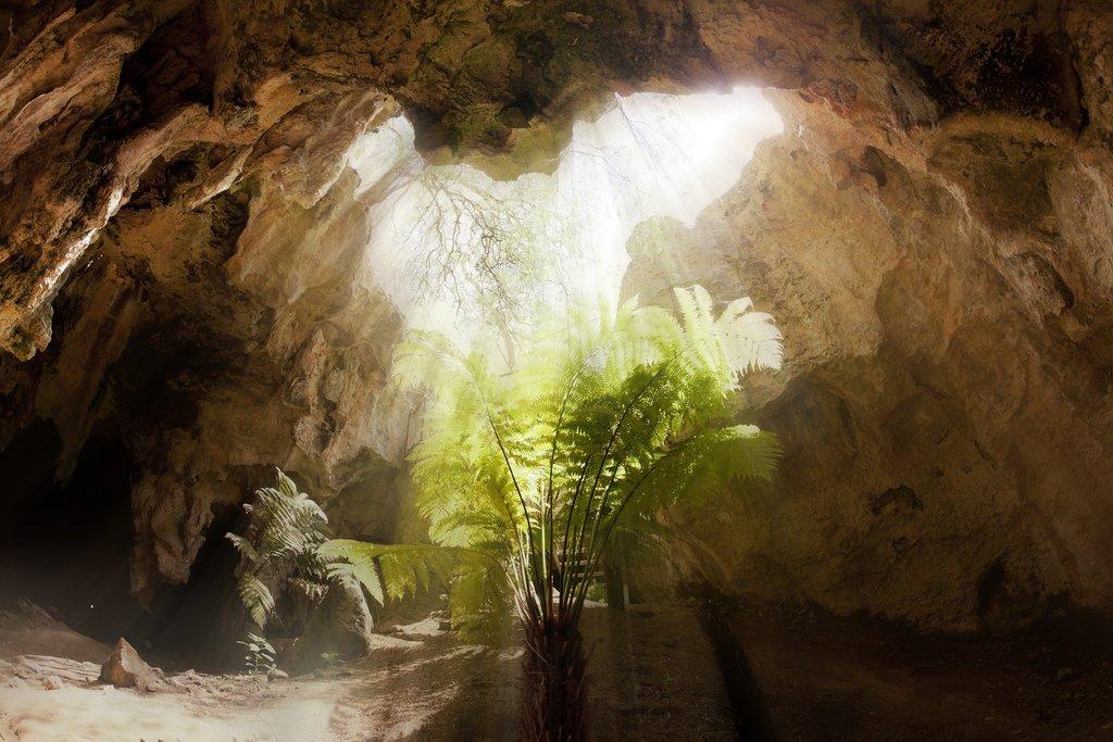Naracoorte Caves, Australia
