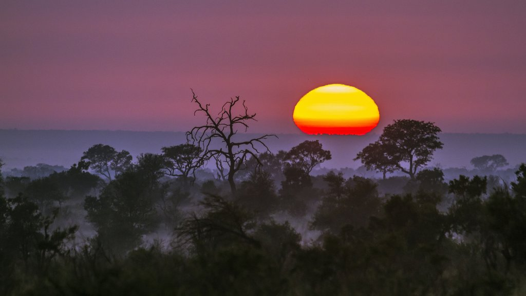 Sunset in Kruger
