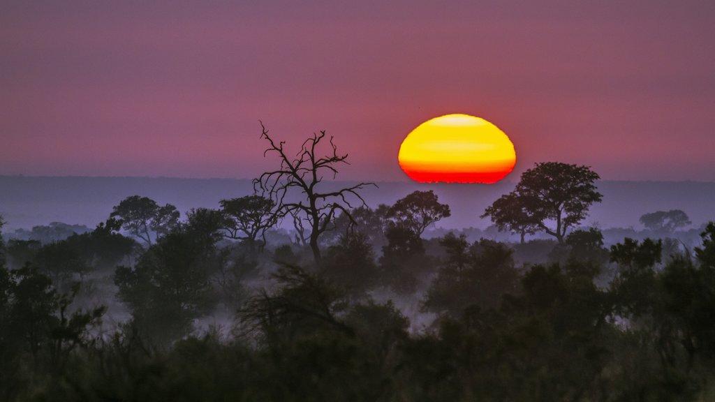 Sunset in Kruger