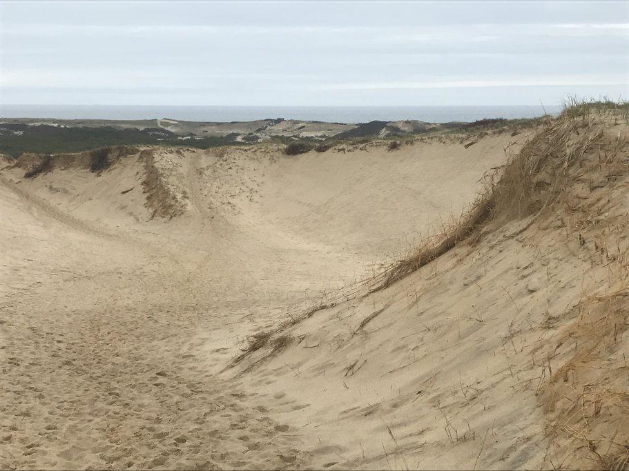 Walking among the giant dunes