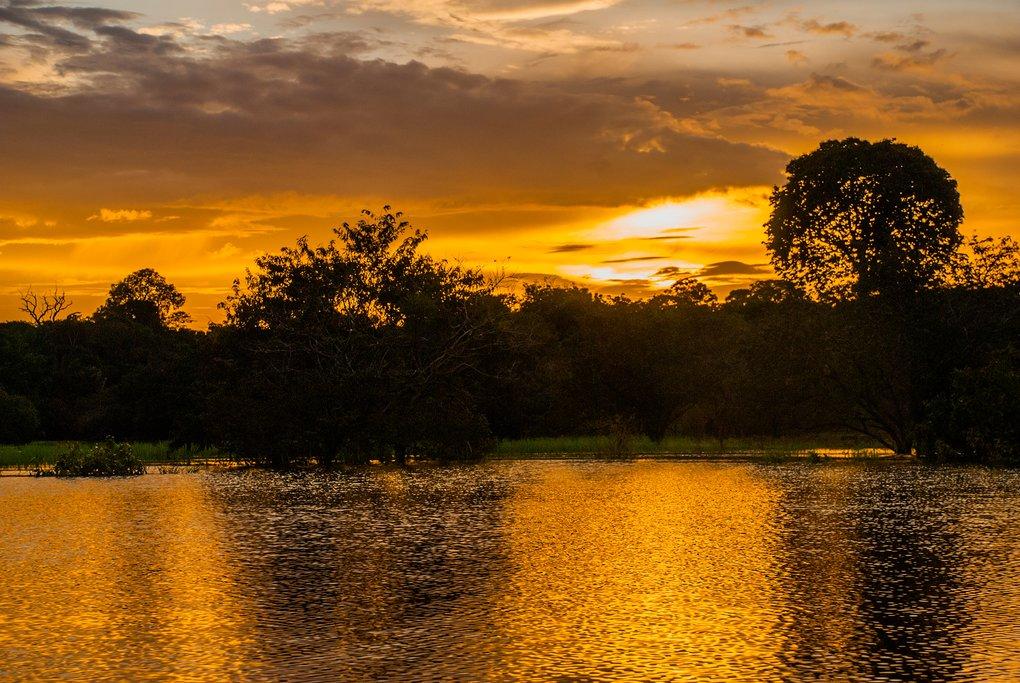 Beautiful sunset in Manaus, Amazon Jungle