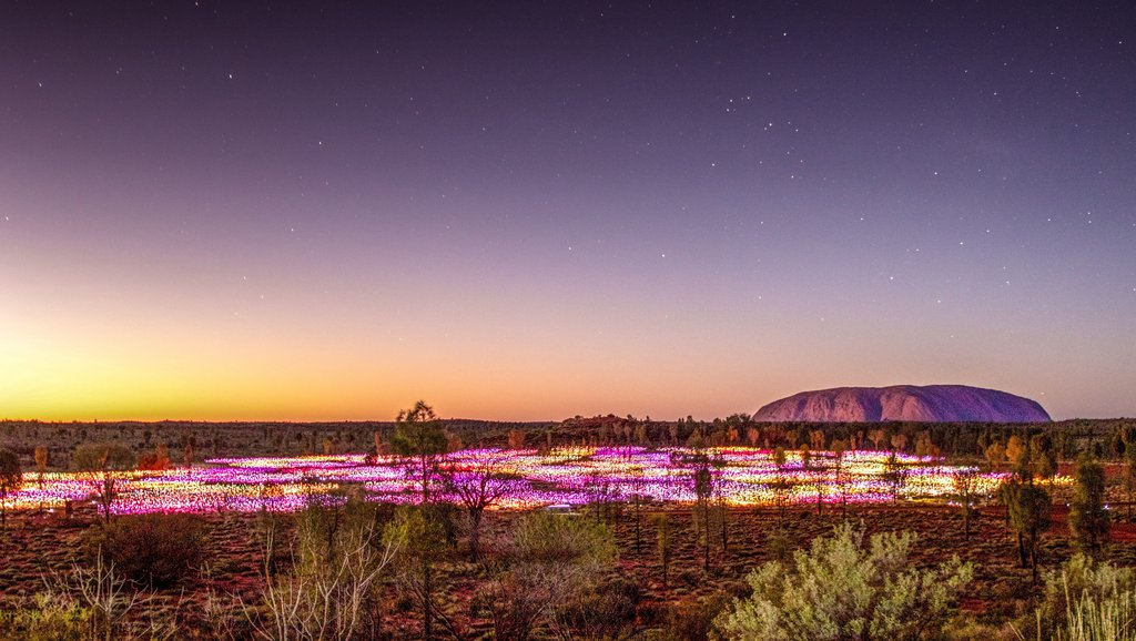 Installazione di Fields of Lights - Uluru