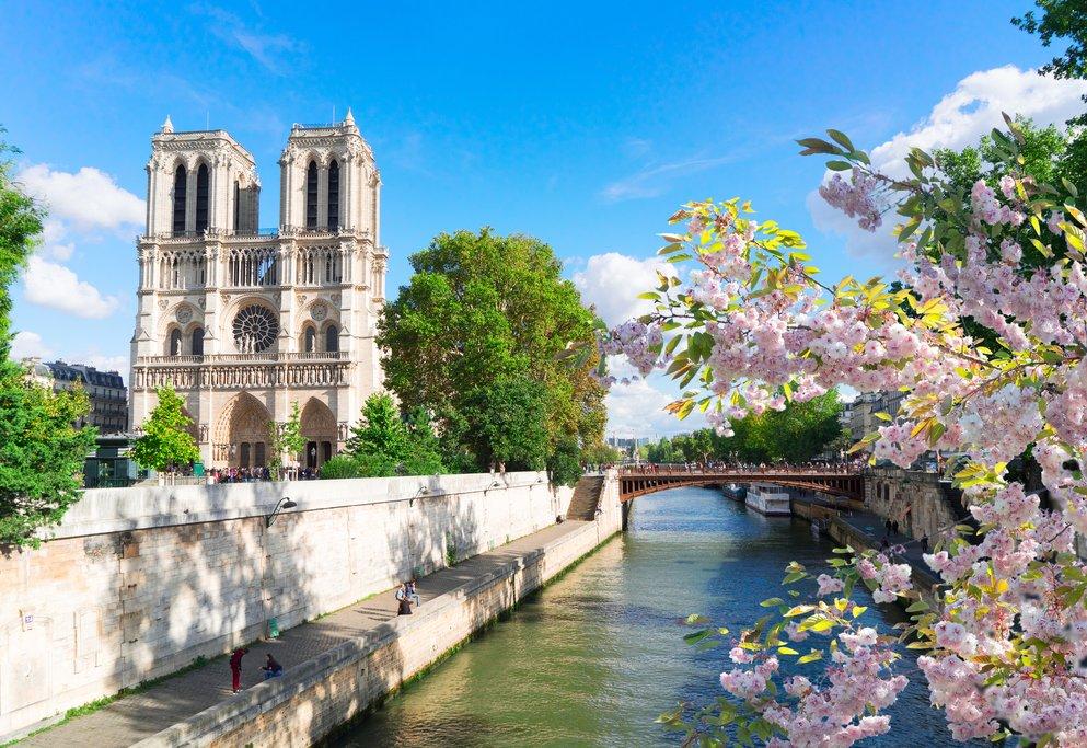 Notre Dame in spring